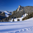 Winter landscape of Tatra Mountains near Przyslop Mietusi - Stock Photo