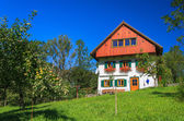 Traditional alpine house in apple orchard — Stock Photo
