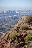 Phoenix Downtown: view from Camelback Mountain — Stock Photo