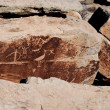 Petroglyphs on the rock — Stock Photo