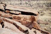 Petroglyphs in Petrified Forest National Park — Stock Photo