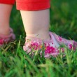 Stock Photo: Baby`s feet on green grass