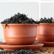 Black tea in ceramic bowls - Stock Photo