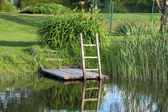 Stairs in the pond — Stock Photo