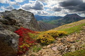 Colored mountain — Stock Photo