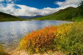 Lake Dancing grayling — Stock Photo