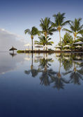Mauritius - the fine vacation spot at any time years. Good hotels and excellent beaches. Warm sea. — Stock Photo