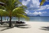 Beautiful tropical beach in luxury resort in Mauritius — Stock Photo