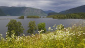 The nature of summer Norway. Mountains, lakes. Fogs and clouds. — Foto de Stock