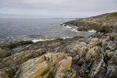 The nature of summer Norway. Fogs and clouds. Rocky coast — Foto de Stock