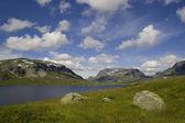 Yaz norveç doğası. dağlar. — Stok fotoğraf