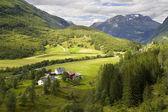 природа норвегии лето. горы. — Стоковое фото