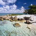Paradise beach. Sea and sky. — Stock Photo #20347639
