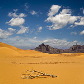 Rocks of Sahara Desert — Stock Photo