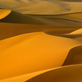 Libyan Desert. — Stock Photo
