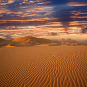 Warm morning light over never ending sand dunes in Morocco — Stock Photo