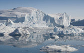 Glaciers and icebergs of Greenland — Stock Photo