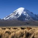 Постер, плакат: Nature of mountain Bolivia