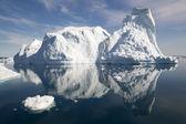 Ledu v Antarktidě — Stock fotografie