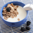 Healthy breakfast in bowl — Stock Photo
