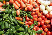 Paprika rajčata mrkev a cibule — Stock fotografie