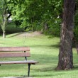 Stock Photo: Bench in Park