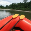 Stock Photo: Paddles on Rubber Raft