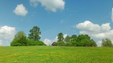 Rural landscape — Stock Video
