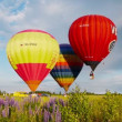 The XVII-th Velikie Luki International Balloon Meet — Stock Video