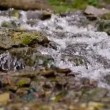 Flowing water — Stock Video