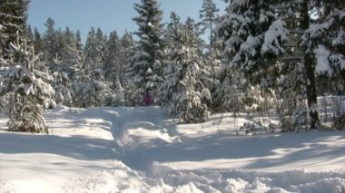 Winter running — Stock Video