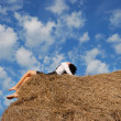 Woman on hay bale in summer field — Stock Photo #12684884