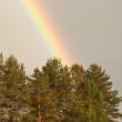 Rainbow after the rain — Stock Photo