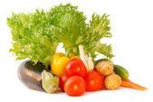 Fresh vegetables — Stockfoto