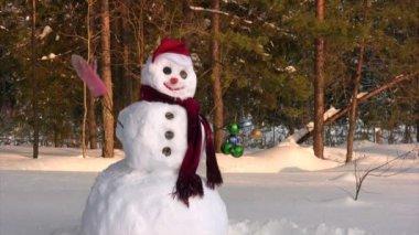 Happy snowman — Stock Video