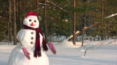 Mujer posa con muñeco de nieve — Vídeo de Stock