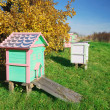 Stock Photo: Honey bee hives