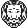 Lion head — Stock Vector #12677615
