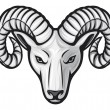 Head of the ram — Stock Vector #12677753