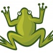 Green frog — Stock Vector #12679063