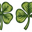Green clover leaves - Stockvectorbeeld