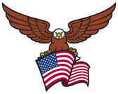 Eagle on american flag — Stock Vector