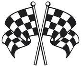 Race flag — Stock Vector