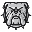 Royalty-Free Stock Vektorfiler: Bulldog head