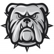 Bulldog head — Vector de stock