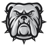 Bulldog head — Stock Vector