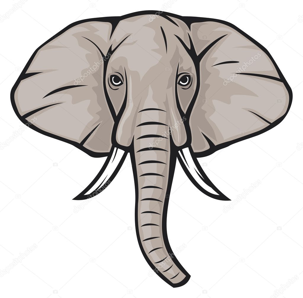 elephant head clipart - photo #47