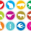 Постер, плакат: Animals icons buttons