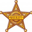 Sheriff badge — Stok Vektör #26764113