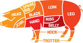 Cuts of pork — Stock Vector